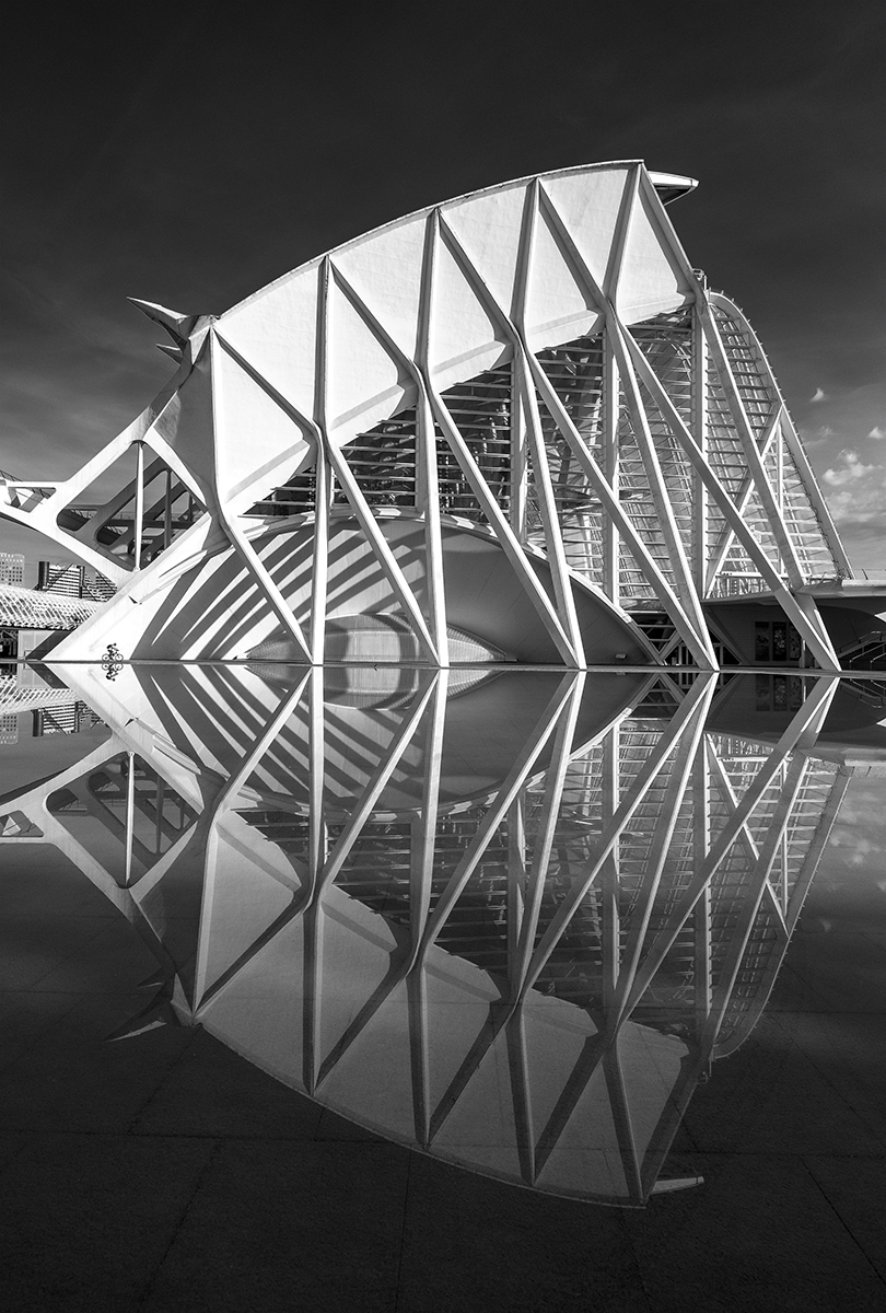CITY OF ARTS AND SCIENCES (VALENCIA) MUSEUM OF SCIENCES